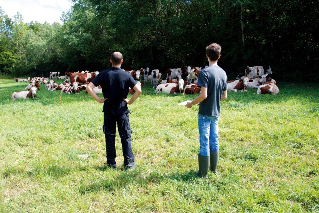Bastien Bernard du GAec Bellecombre à Pimorin fait découvrir ses pratiques à Lucas Gouwy, chargé d'études Environnement à l'URFAC