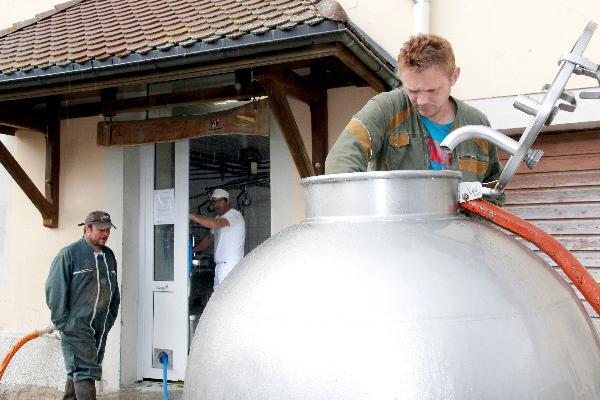 Les dix producteurs apportent chaque jour le lait nécessaire à la fabrication d'environ quatorze Comté