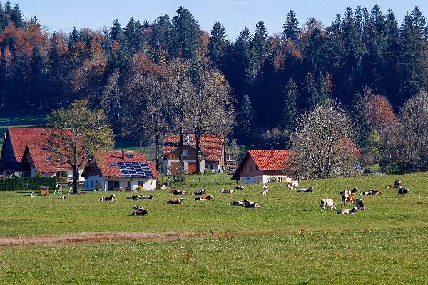 Les fermes des sociétaires de la fruitière des Jarrons sont localisées dans les hameaux qui caractérisent le mode de peuplement de cette montagne. (Photo © CIGC/Petit)