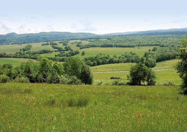 Le secteur d'Eternoz avec ses haies et au second plan, le faisceau salinois et la butte de Montmahoux.